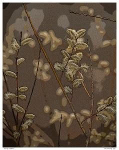 """Spring Catkins"""