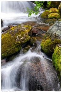 Alder Creek Cascade