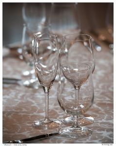 """""""Glassware"""" - Casa Loma, Library"""