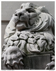 """Lion Gargoyle"" - Post Office, Ottawa"