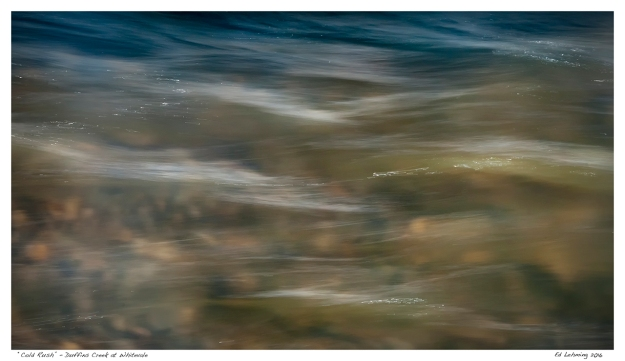 """""""Cold Rush"""" - Duffins Creek at Whitevale"""