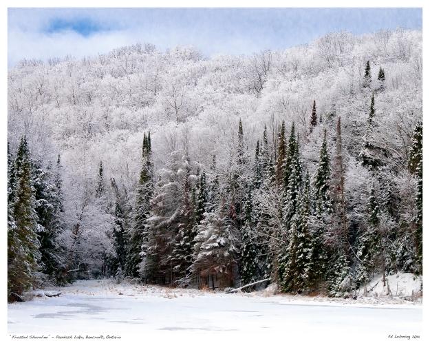 """Frosted Shoreline"" - Paudash Lake, Bancroft, Ontario"
