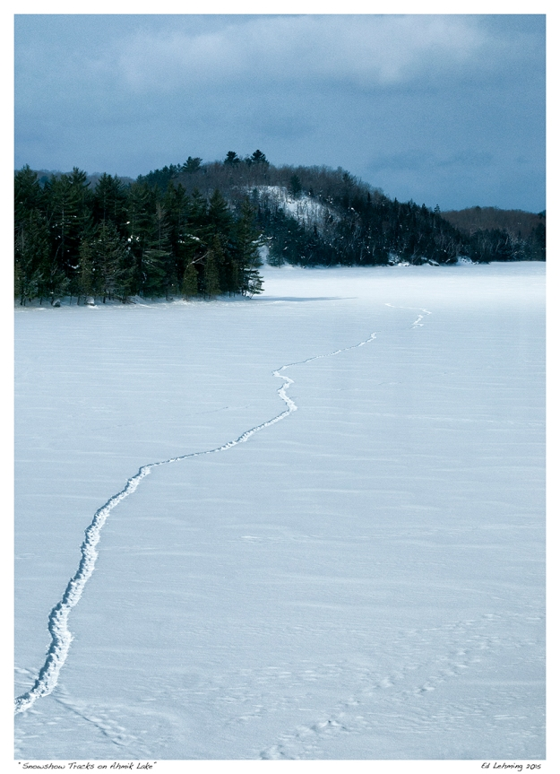 """Snowshow Tracks on Ahmik Lake"""