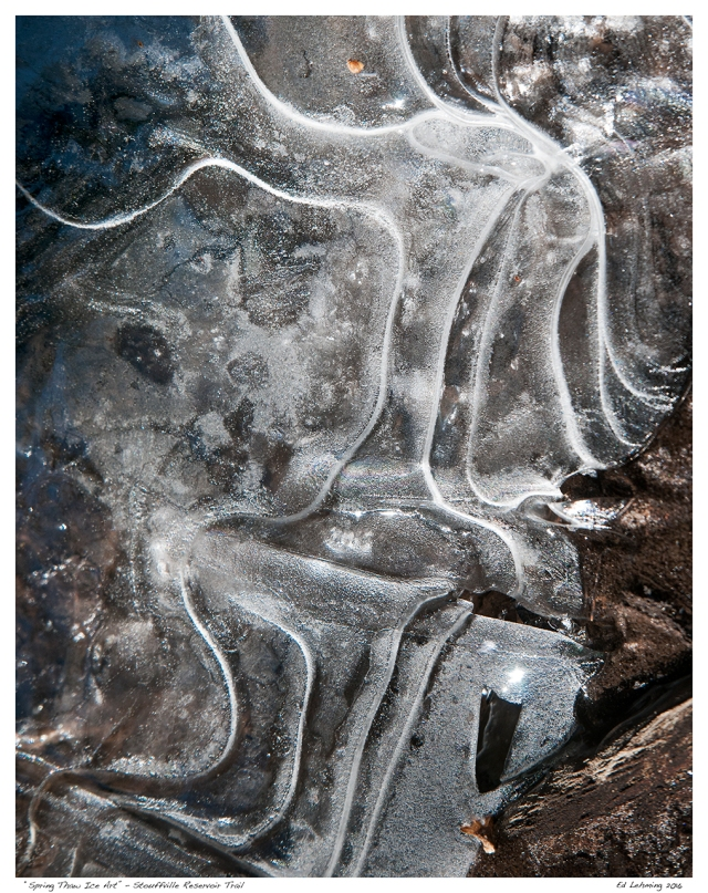 """Spring Thaw Ice Art"" - Stouffville Reservoir Trail"