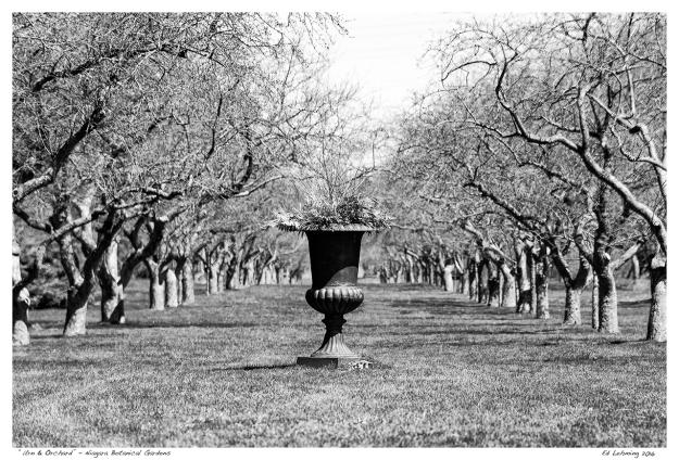"""Urn & Orchard"" - Niagara Botanical Gardens"