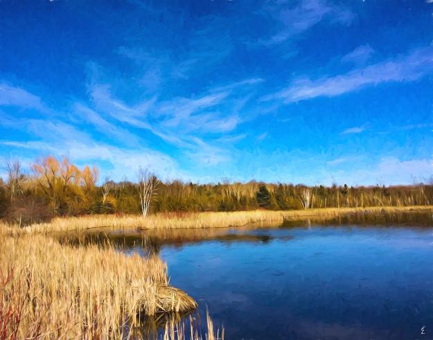 Stouffville Reservoir in Spring