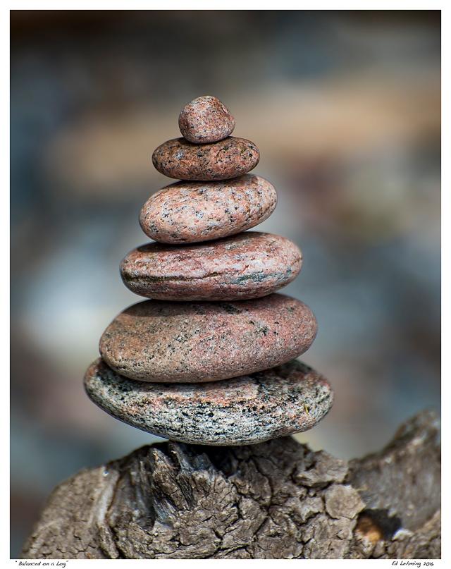"""Balanced on a Log"""