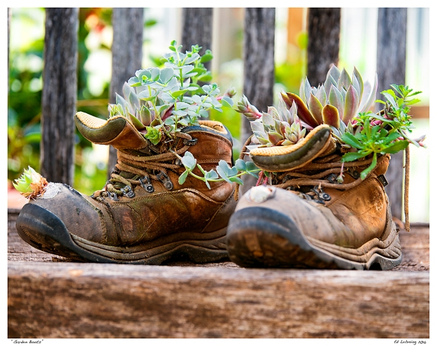 """""""Garden Boots"""""""
