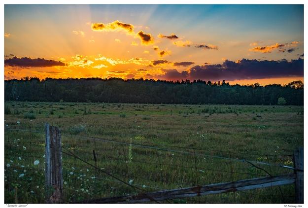 """""""Janetville Sunset"""""""