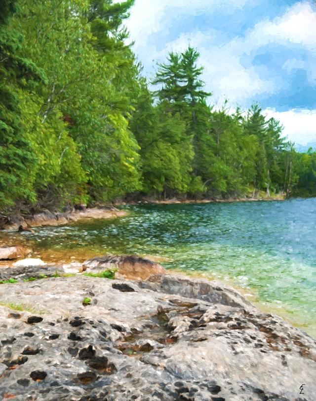 Bay Lake Cove
