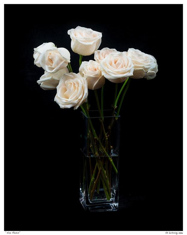 """""""Nine Roses"""""""