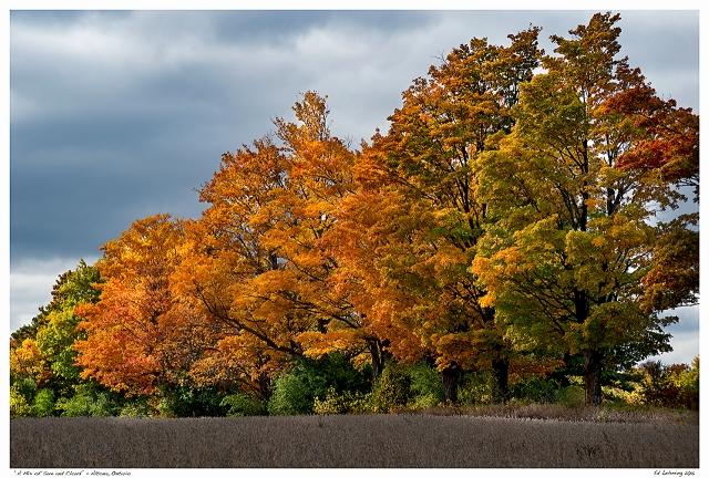 """""""A Mix of Sun and Cloud"""" - Altona, Ontario"""