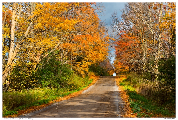 """Backroads Colour"" - 28th Sideline, Pickering"