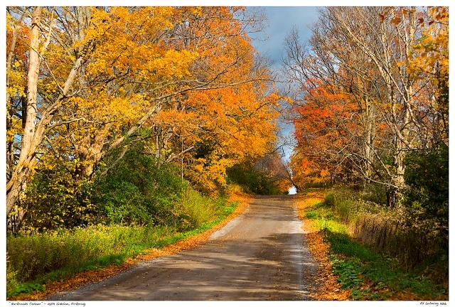 """Backroads Colour"" - 28th Sideline, Pickering"