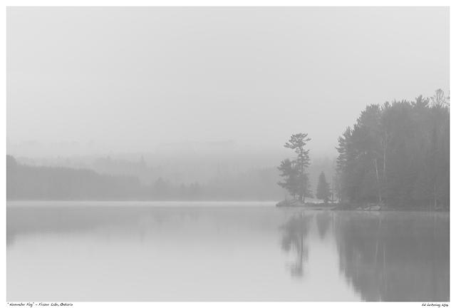 """""""November Fog"""" - Fraser Lake, Ontario"""