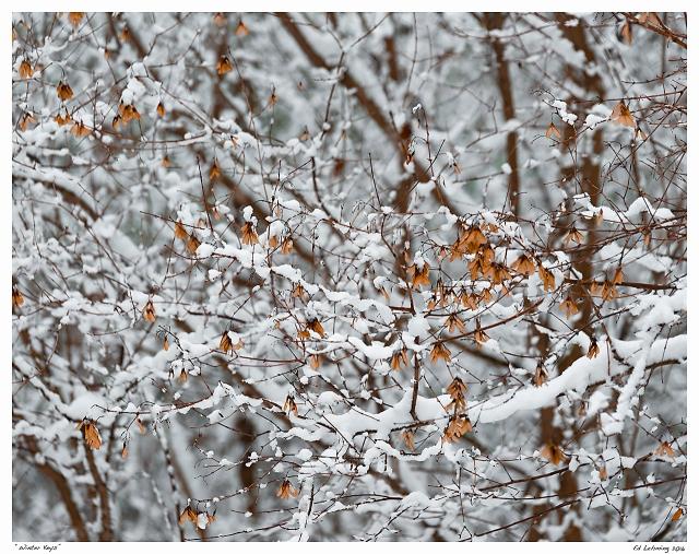 """""""Winter Keys"""""""