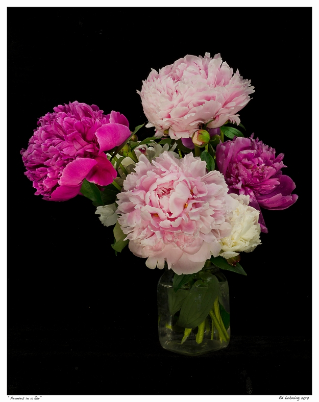 """Peonies in a Jar"""