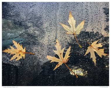 """Sunday Morning Window Art"""