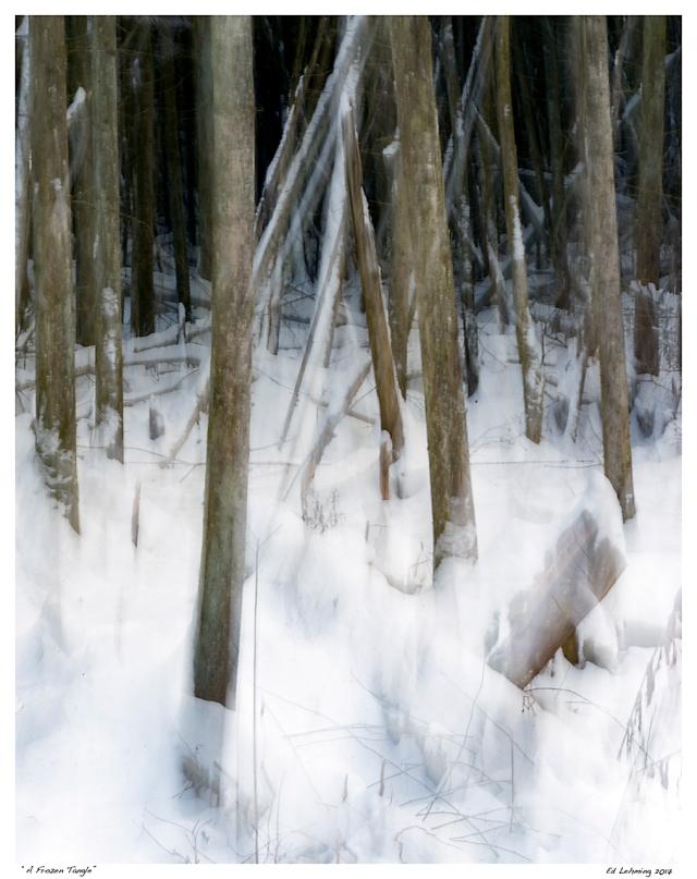 """A Frozen Tangle"""