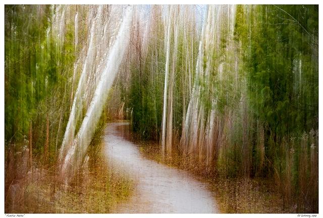 """Familiar Paths"""