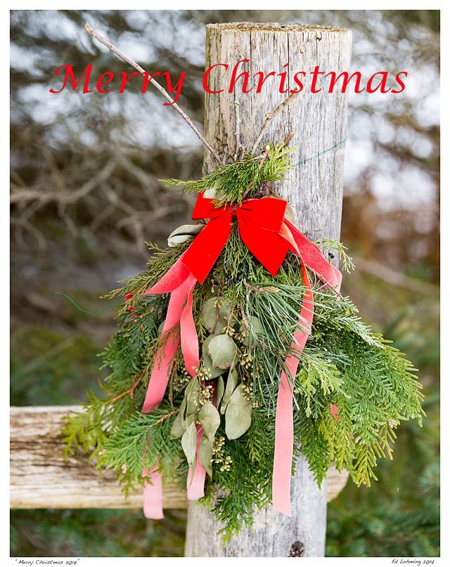 """Merry Christmas 2017"""