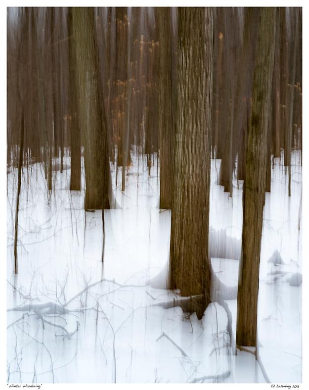 """Winter Wandering"""