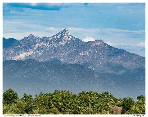 """Sierra de la Laguna and Estuary"" - San Jose del Cabo"