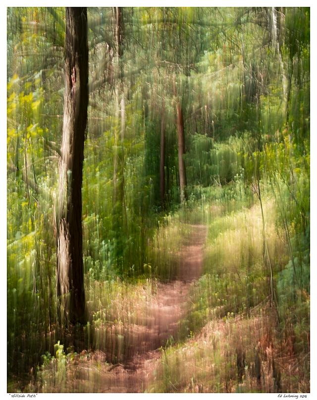 """Hillside Path"""