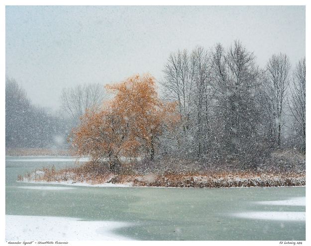"""November Squall"" - Stouffville Reservoir"