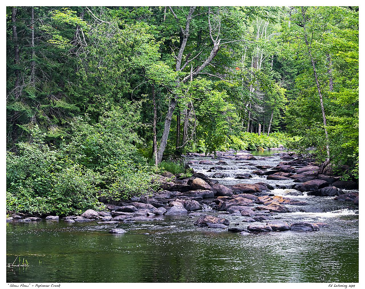 """Slow Flow"" - Papineau Creek"