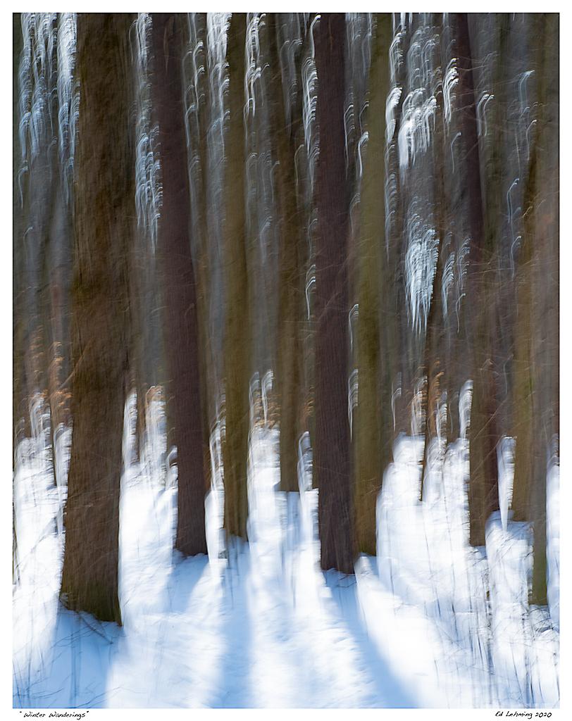 """Winter Wanderings"""