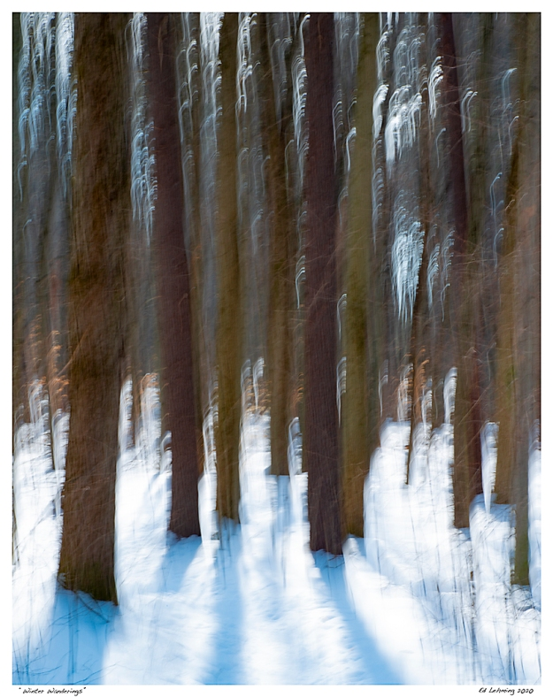 """Winter Wanderings"""