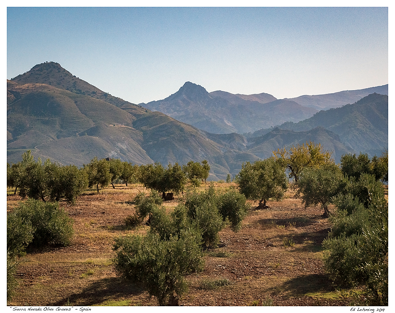 """Sierra Nevada Olive Groves"" - Spain"